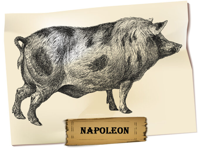 Animal Farm Napoleon